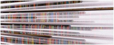 glencoe library book shelves
